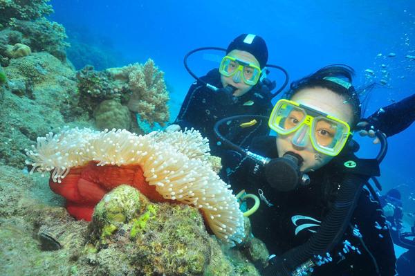 Green-Diving