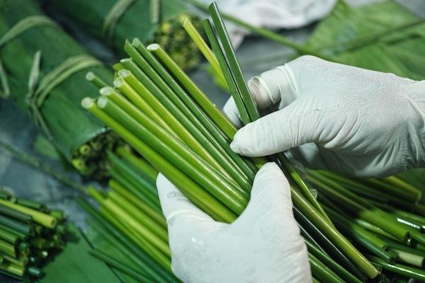 cut-grass-straws