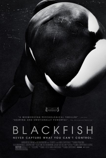 Blackfish Environmental Documentaries on NetFlix