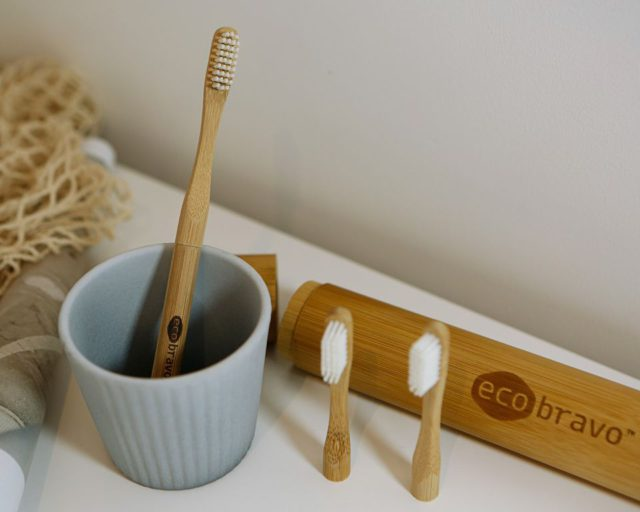 Eco Bravo Conventional toothbrushes review