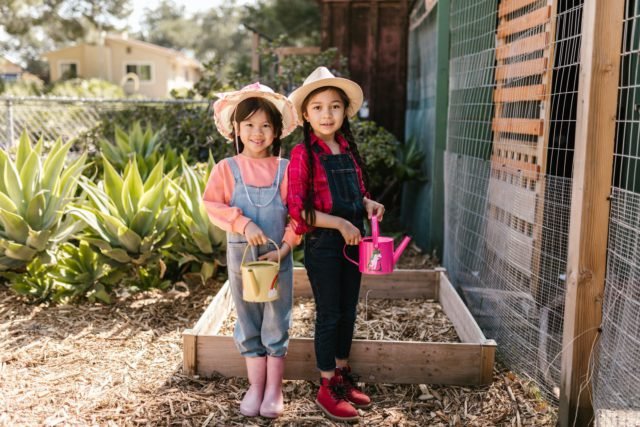 Plant your own garden on Memorial Day